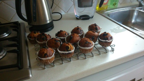 Muffins2After