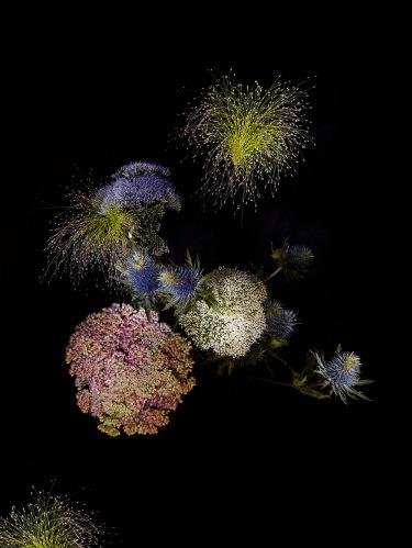 SarahIllenberger_FlowerWorks